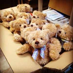 Our teddy bears have stitches from their cleft lip surgery.